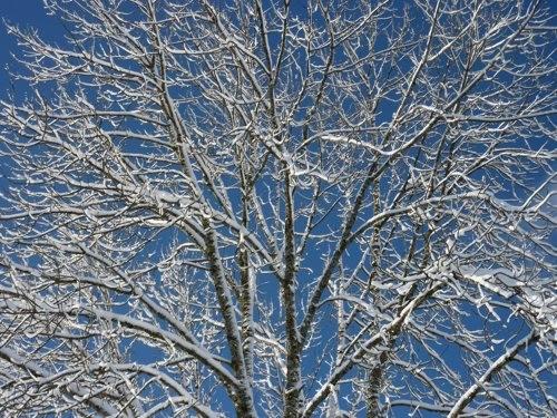 viry, neige, hiver, village, jura,