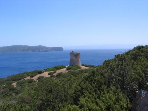 caredda Angelo, Cau Marietta, Sardaigne