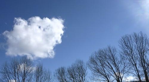 Viry,hiver,ciel,nuage,poésie,frêne,Jura,nature