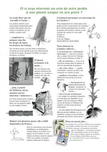 cardere sauvage, jardin,Hulotte