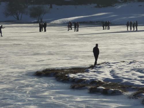 Charix, Lac Genin, Ain, patiner