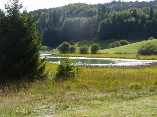 lac Genin, balade, nénuphar, nature, été,charix
