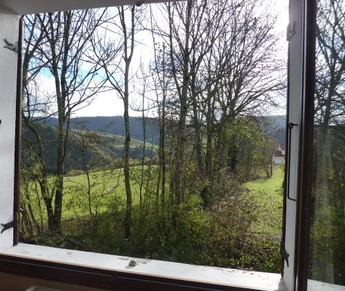Jura, viry, 39, fenêtres, nature, automne,