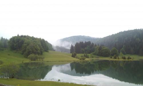 Charix,lac Genin, auberge du lac Genin,épicéa,